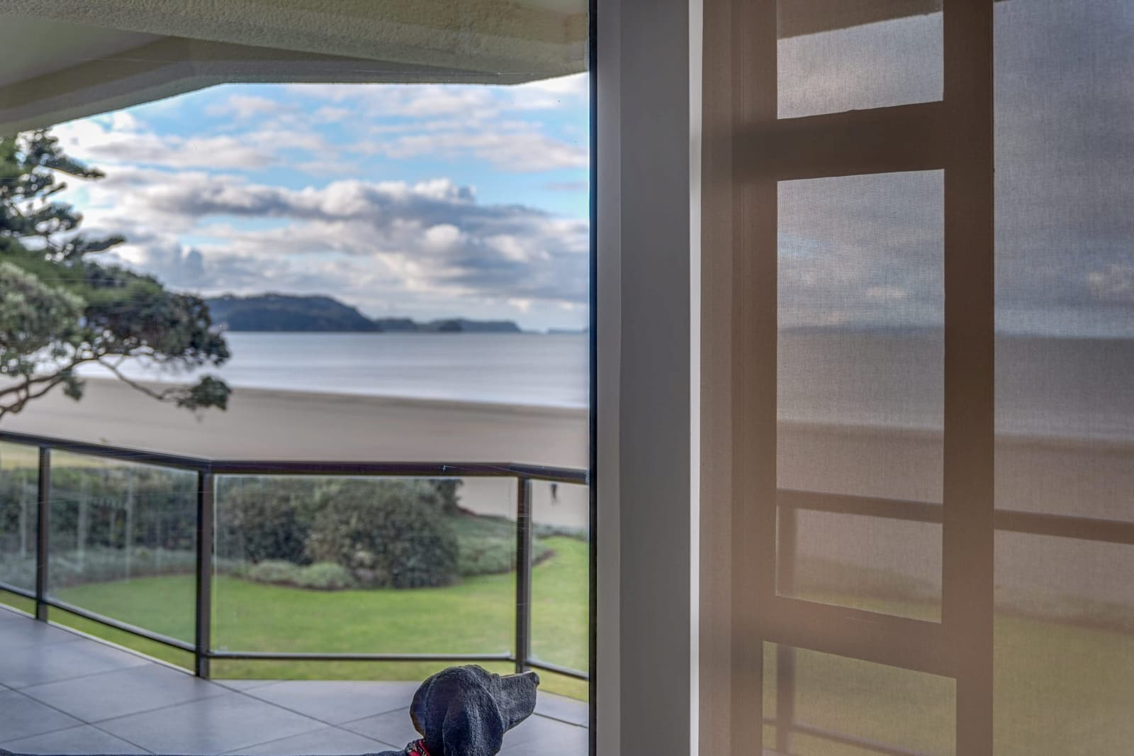 Window roller blind of balcony with a dog looking at the sea