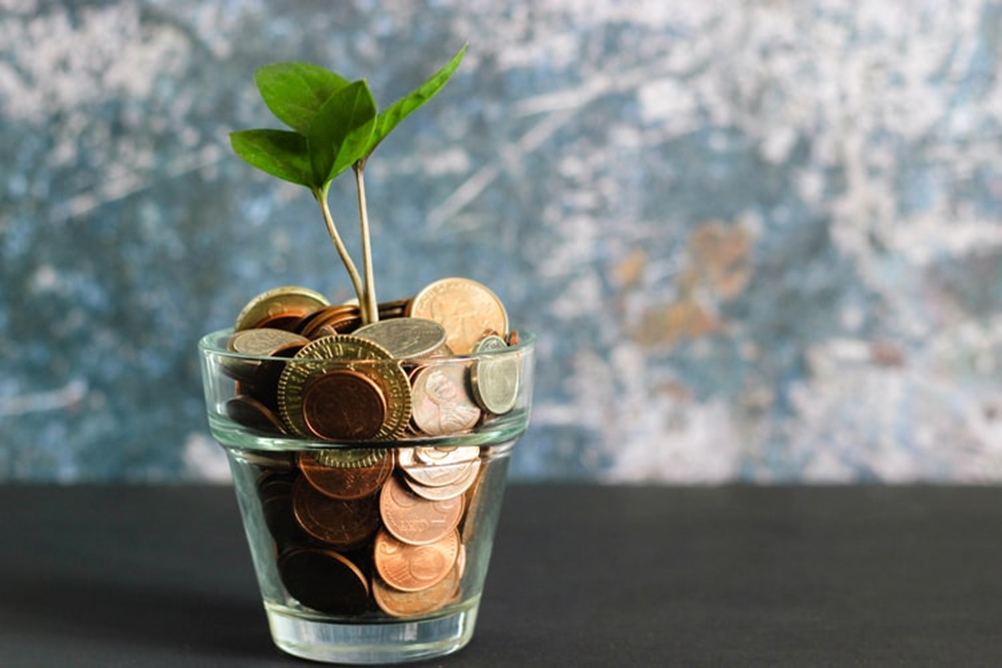 A glass containing a plant and coins